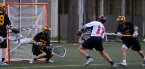 Read more about the article Best Lacrosse Goals